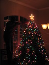 Christmas_tree_009